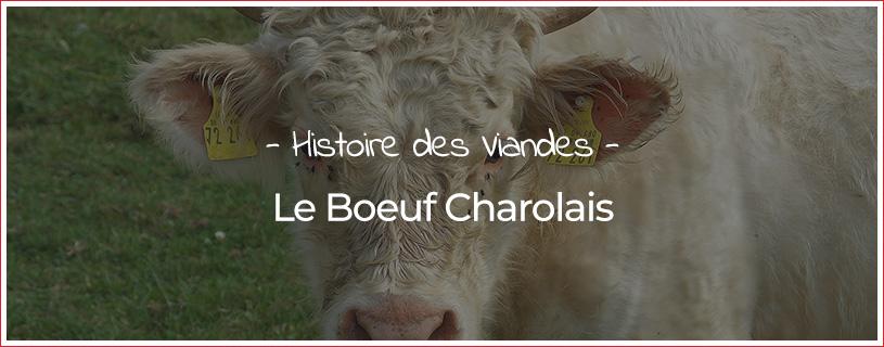 Boeuf Charolais