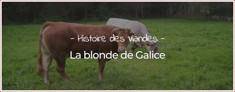 Blonde de Galice