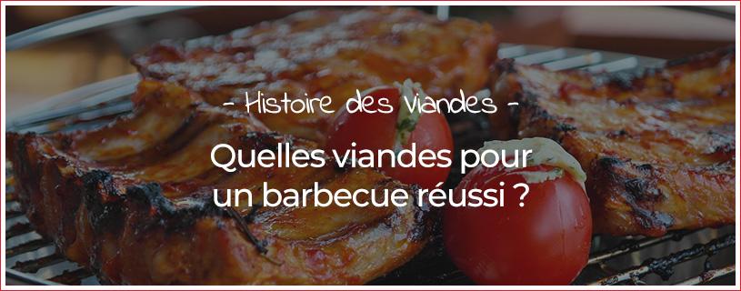 Quelles viandes pour un barbecue réussi ?